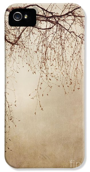 Vertical iPhone 5 Cases - Listen Closely  iPhone 5 Case by Priska Wettstein