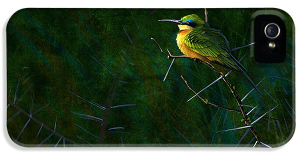 African iPhone 5 Cases - Little Bee Eater iPhone 5 Case by Aaron Blaise