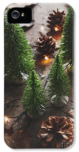 Celebration iPhone 5 Cases - Little trees with pine cones and leaves  iPhone 5 Case by Sandra Cunningham
