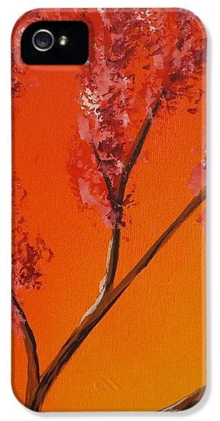 Burnt Umber iPhone 5 Cases - Living Loving Tree top left iPhone 5 Case by Darren Robinson