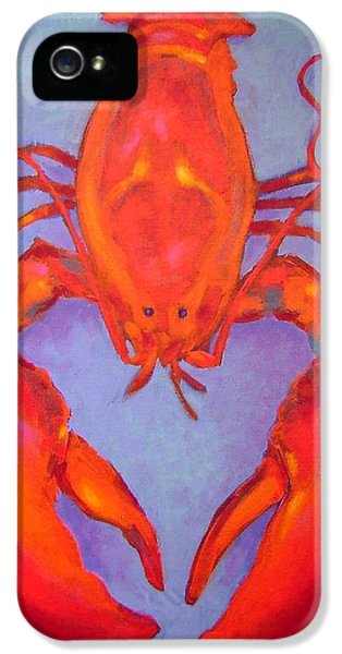 Decorative Art iPhone 5 Cases - Lobster iPhone 5 Case by John  Nolan