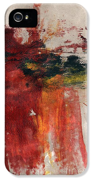 Office Art iPhone 5 Cases - Long Time Coming iPhone 5 Case by Linda Woods