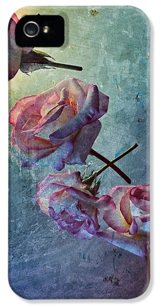 Modern Steampunk iPhone 5 Cases - Look Back in Time iPhone 5 Case by Marianna Mills