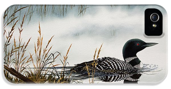 Loons Misty Shore IPhone 5 / 5s Case by James Williamson
