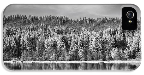Infrared iPhone 5 Cases - Lost in Reflection iPhone 5 Case by Laurie Search