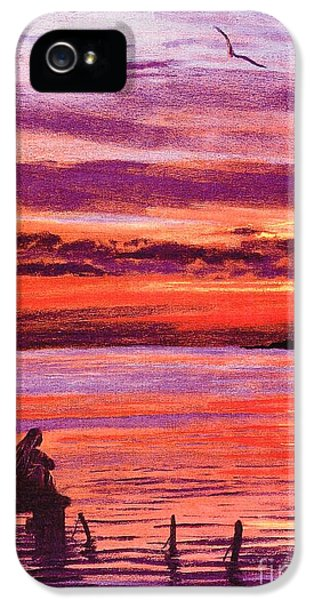 Lost In Wonder IPhone 5 / 5s Case by Jane Small