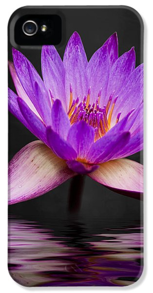 Padded iPhone 5 Cases - Lotus iPhone 5 Case by Adam Romanowicz