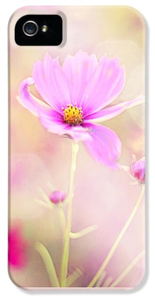 Pink Flowers iPhone 5 Cases - Lovechild iPhone 5 Case by Amy Tyler