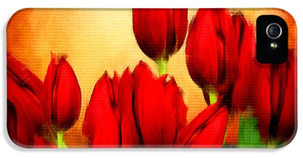 Tulips iPhone 5 Cases - Lovers Hearts iPhone 5 Case by Lourry Legarde