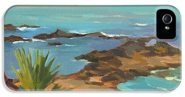 Indian Ocean iPhone 5 Cases - Low Tide iPhone 5 Case by Diane McClary