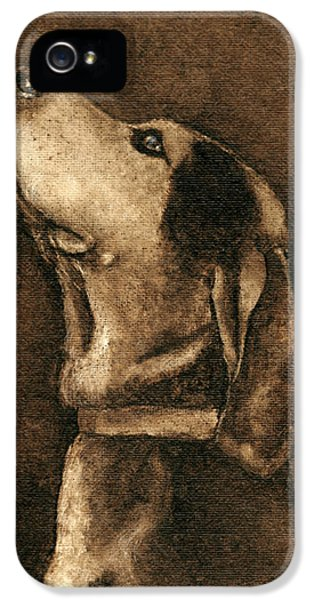 Burnt Umber iPhone 5 Cases - Loyalty iPhone 5 Case by Theresa Stinnett