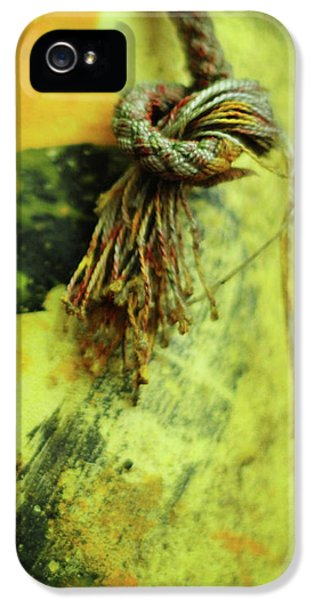 Crabbing iPhone 5 Cases - Lucky Number Seven iPhone 5 Case by Rebecca Sherman