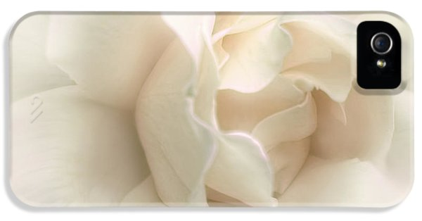 Ivory Rose iPhone 5 Cases - Luminous Ivory Rose Flower iPhone 5 Case by Jennie Marie Schell