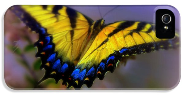Swallowtail iPhone 5 Cases - MAGIC of FLIGHT iPhone 5 Case by Karen Wiles