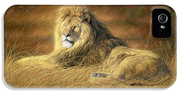 Lion iPhone 5 Cases - Majestic iPhone 5 Case by Lucie Bilodeau
