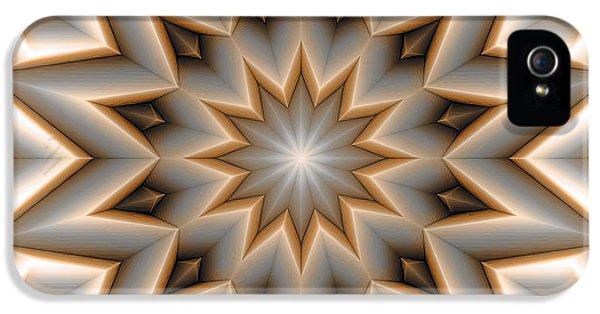 Circles iPhone 5 Cases - Mandala 107 Orange iPhone 5 Case by Terry Reynoldson