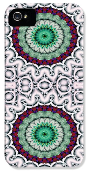 Circles iPhone 5 Cases - Mandala 9 for iPhone Double iPhone 5 Case by Terry Reynoldson