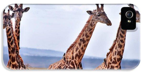 Masai Giraffe IPhone 5 / 5s Case by Adam Romanowicz