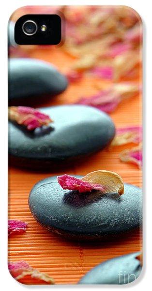 Meditation Zen Path IPhone 5 / 5s Case by Olivier Le Queinec