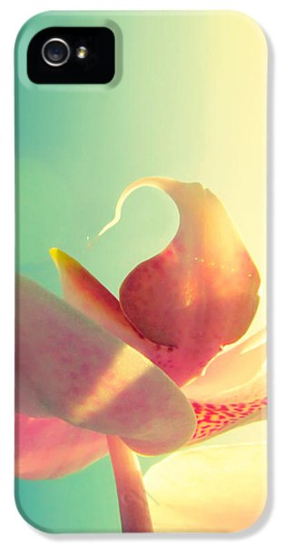 Melody IPhone 5 / 5s Case by Amy Tyler