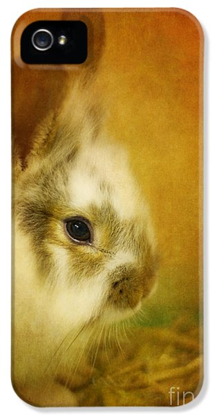 Memories Of Watership Down IPhone 5 / 5s Case by Lois Bryan