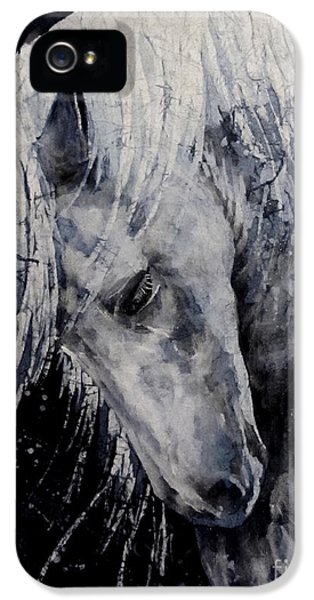 Mane iPhone 5 Cases - Moody Blues iPhone 5 Case by Hailey E Herrera