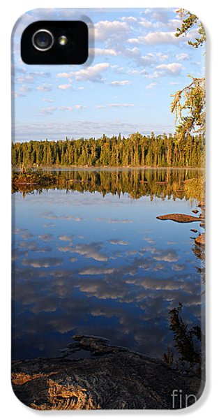Caribou iPhone 5 Cases - Morning Reflections on Leano Lake iPhone 5 Case by Larry Ricker