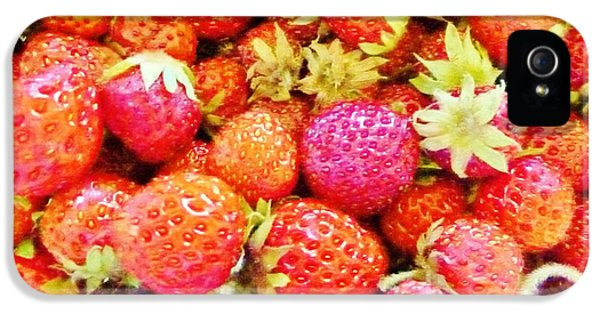 Fresas iPhone 5 Cases - Mother Natures Bounty iPhone 5 Case by Ann Michelle Swadener