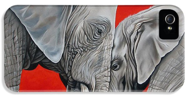 Elephant iPhone 5 Cases - Mothers Love iPhone 5 Case by Ilse Kleyn
