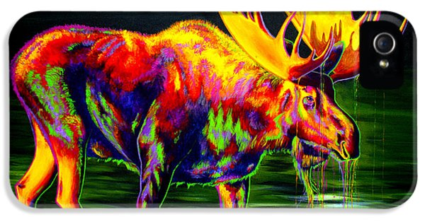 Abstract Canvas iPhone 5 Cases - Motley Moose iPhone 5 Case by Teshia Art