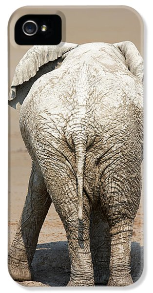 Dirty iPhone 5 Cases - Muddy elephant with funny stance  iPhone 5 Case by Johan Swanepoel