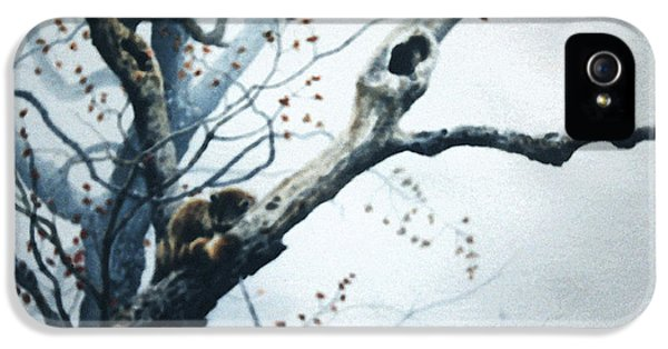 Nap In The Mist IPhone 5 / 5s Case by Hanne Lore Koehler