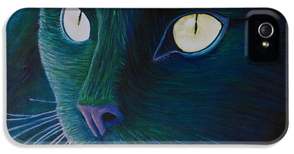 Black Cat iPhone 5 Cases - Night Vision iPhone 5 Case by Brian  Commerford