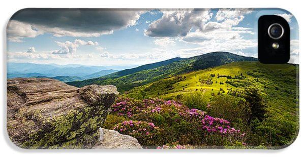 Epic iPhone 5 Cases - North Carolina Blue Ridge Mountains Roan Rhododendron Flowers NC iPhone 5 Case by Dave Allen