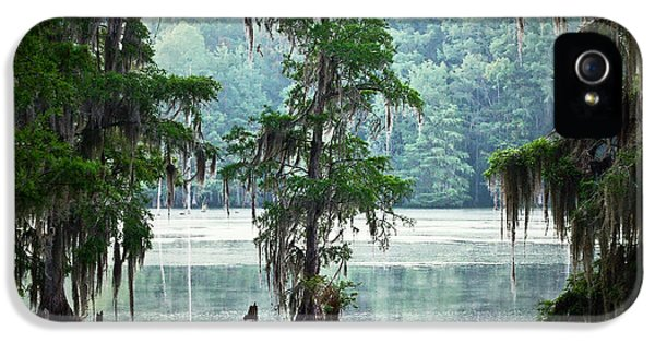 Spooky iPhone 5 Cases - North Florida Cypress Swamp iPhone 5 Case by Rich Leighton