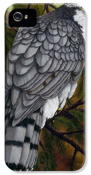 Northern Goshawk IPhone 5 / 5s Case by Rick Bainbridge