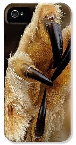 Northern Saw-whet Owl Foot IPhone 5 / 5s Case by Us Geological Survey