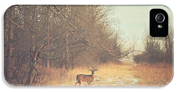 November Deer IPhone 5 / 5s Case by Carrie Ann Grippo-Pike