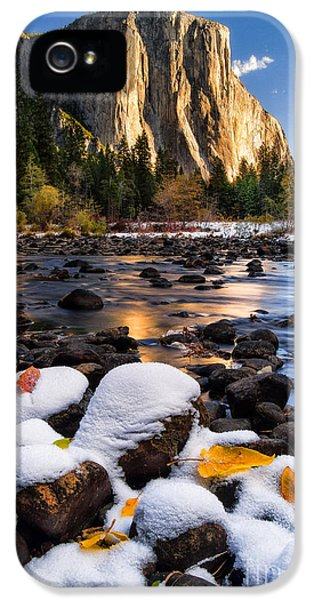 Snow iPhone 5 Cases - November Morning iPhone 5 Case by Anthony Bonafede
