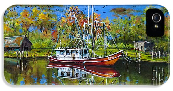 Bayou iPhone 5 Cases - Off Season iPhone 5 Case by Dianne Parks