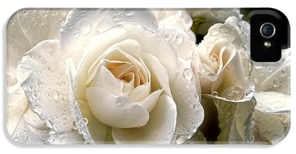 Ivory Rose iPhone 5 Cases - Old Lace Rose Bouquet iPhone 5 Case by Jennie Marie Schell