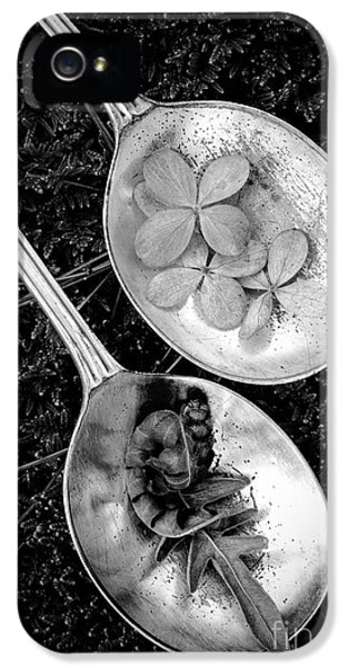 Play iPhone 5 Cases - Old Silver Spoons iPhone 5 Case by Edward Fielding
