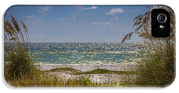 On A Clear Day IPhone 5 / 5s Case by Marvin Spates