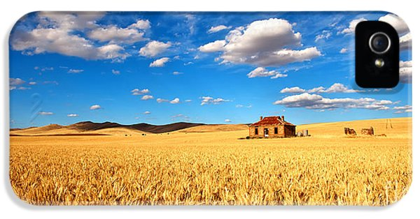 Farm iPhone 5 Cases - On Golden Fields iPhone 5 Case by Bill  Robinson