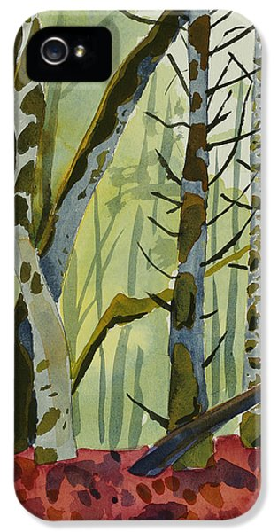 On Ivy Hill IPhone 5 / 5s Case by Alexandra Schaefers