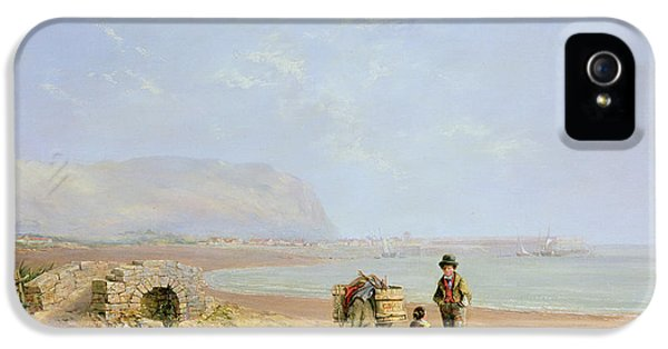 Donkey iPhone 5 Cases - On The Beach iPhone 5 Case by Charles Branwhite