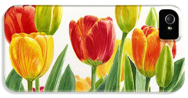 Tulips iPhone 5 Cases - Orange and Yellow Tulips Horizontal Design iPhone 5 Case by Sharon Freeman