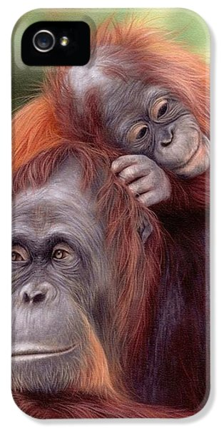 Orangutans Painting IPhone 5 / 5s Case by Rachel Stribbling