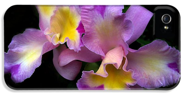Orchid Embrace IPhone 5 / 5s Case by Jessica Jenney