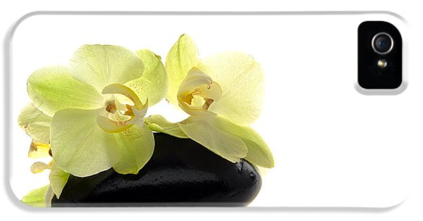 Orchid Flowers On Polished Stone IPhone 5 / 5s Case by Olivier Le Queinec